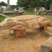 Crocodile - Woodbridge